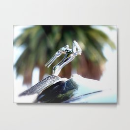 Ready for takeoff Metal Print