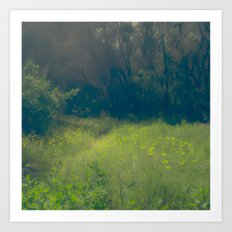 Greenbelt Art Print