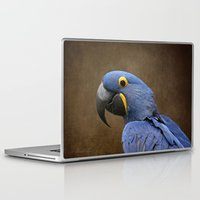 uncharted Laptop & iPad Skins featuring Beauty is an Enchanted Soul - Hyacinth Macaw - Anodorhynchus hyacinthinus by Sharon Mau