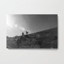 Horses Cantering Metal Print