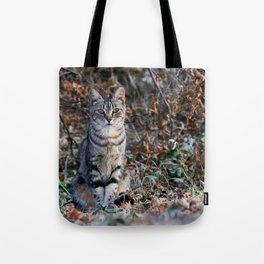 Sitting cat posing Tote Bag