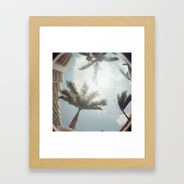 Aruba Fish Eye Framed Art Print