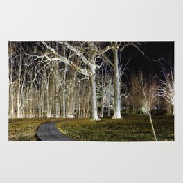 A Walk in the Park - Inverted Art Rug
