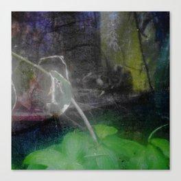 Blur #4 Canvas Print