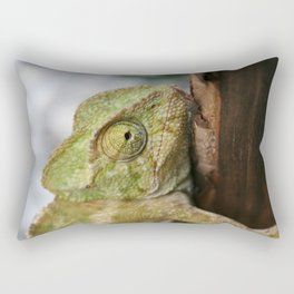 Green Chameleon Holding On To A Shed Door Rectangular Pillow