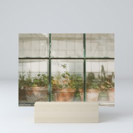 Greenhouse Mini Art Print