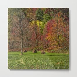 Lonely Bails of Color Metal Print