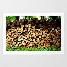 The Great Wall Of Wood Art Print