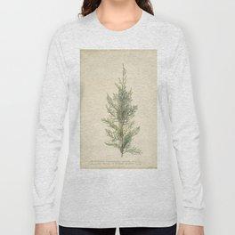 Botanical Juniper Long Sleeve T-shirt