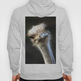 Ostrich Head Hoody
