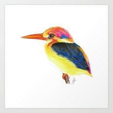 Kingfisher II Art Print