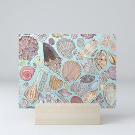 Sanibel Sea Shells Mini Art Print