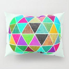 Geodesic 2 Pillow Sham