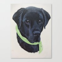 flash Canvas Prints featuring Flash by Ginny M