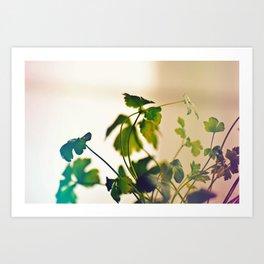 Bright Parsley Art Print