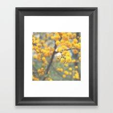 pollen infestation ... don't breathe! Framed Art Print