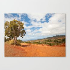 The red dirt road Canvas Print