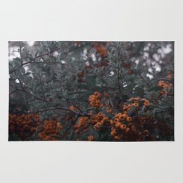 Muted Holly Rug