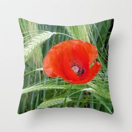 The Red Poppy in the Field Throw Pillow