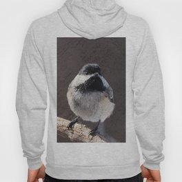 Chickadee with Texture Hoody