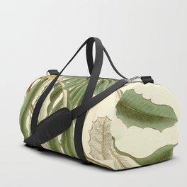 Banksia integrifolia (Coast Banksia) 1827 Duffle Bag