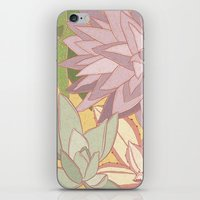 succulents iPhone & iPod Skins featuring Succulents by Julia Walters Illustration