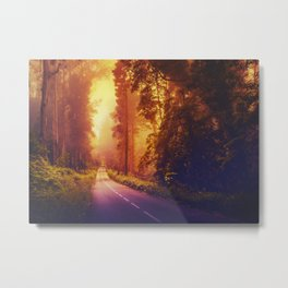 Enchanting road Metal Print