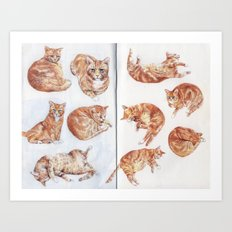 Rhubarb (my cat) studies Art Print