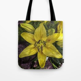 Hemerocallis Tote Bag