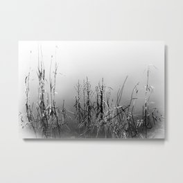 Echoes Of Reeds 2 Metal Print