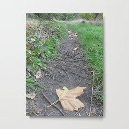 Leaf Alone Metal Print