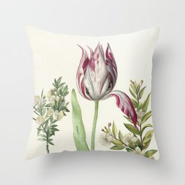 Tulip, two Branches of Myrtle and two Shells Throw Pillow