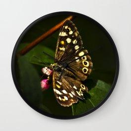 Butterfly feeding on nectar Wall Clock