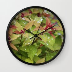 Drink Wall Clock