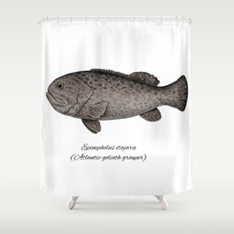 Grouper goliath Shower Curtain