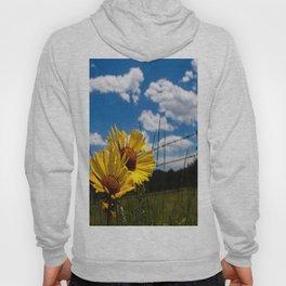 A Rocky Mountain Sunflower Hoody
