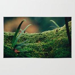 Japanese Moss Rug