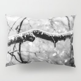 Old Linden Tree On A Rainy Day Of Autumn Pillow Sham