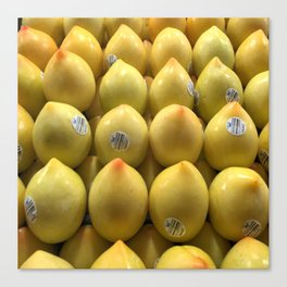 Egg Fruit - Nice ! Canvas Print
