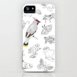 Animals of North America  iPhone Case
