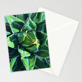 Luxurious Succulent Bathed in Late Afternoon Shadows Stationery Cards