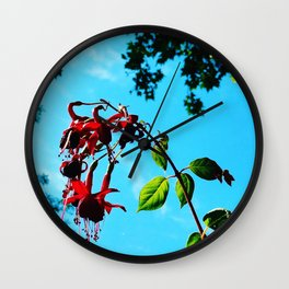 Hardy Fuschia (2019) from Roberta Winters Photography Wall Clock