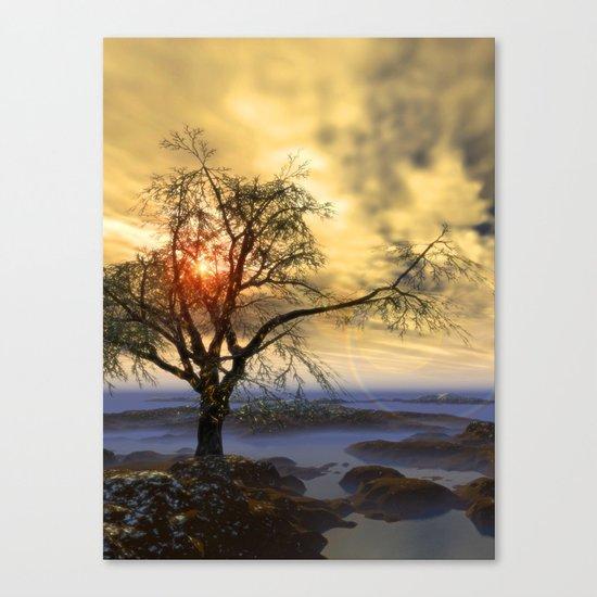 Tree in November sun Canvas Print