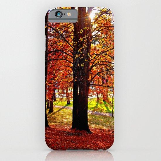 Autumn sunshine iPhone & iPod Case