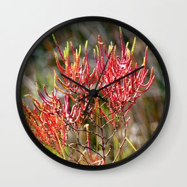 Watercolor Seed, Forb 01, Janes Island, Maryland Wall Clock