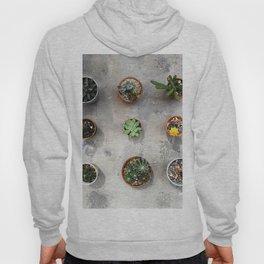 Cactus family Hoody