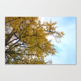Buttery Foliage // Germany Canvas Print