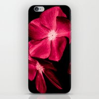 ruby iPhone & iPod Skins featuring Ruby by Loredana