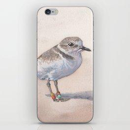 Monterey Bay Snowy Plover iPhone Skin