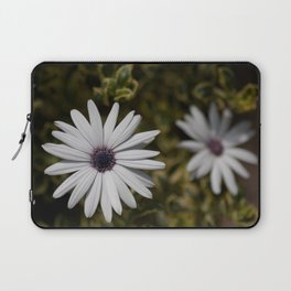 Shasta Daisy Pair Laptop Sleeve
